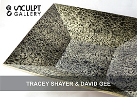 Tracey Shayer & David Gee 2017